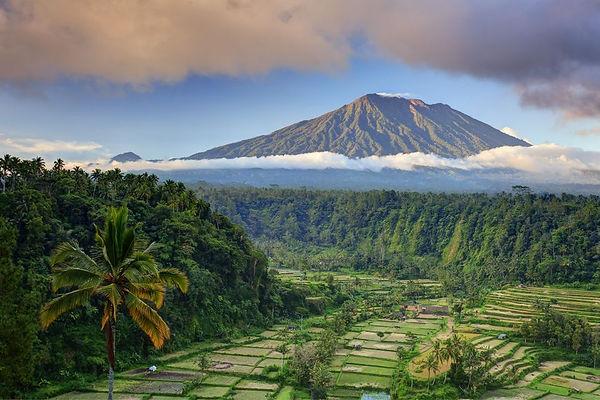 Bali image 2.jpg