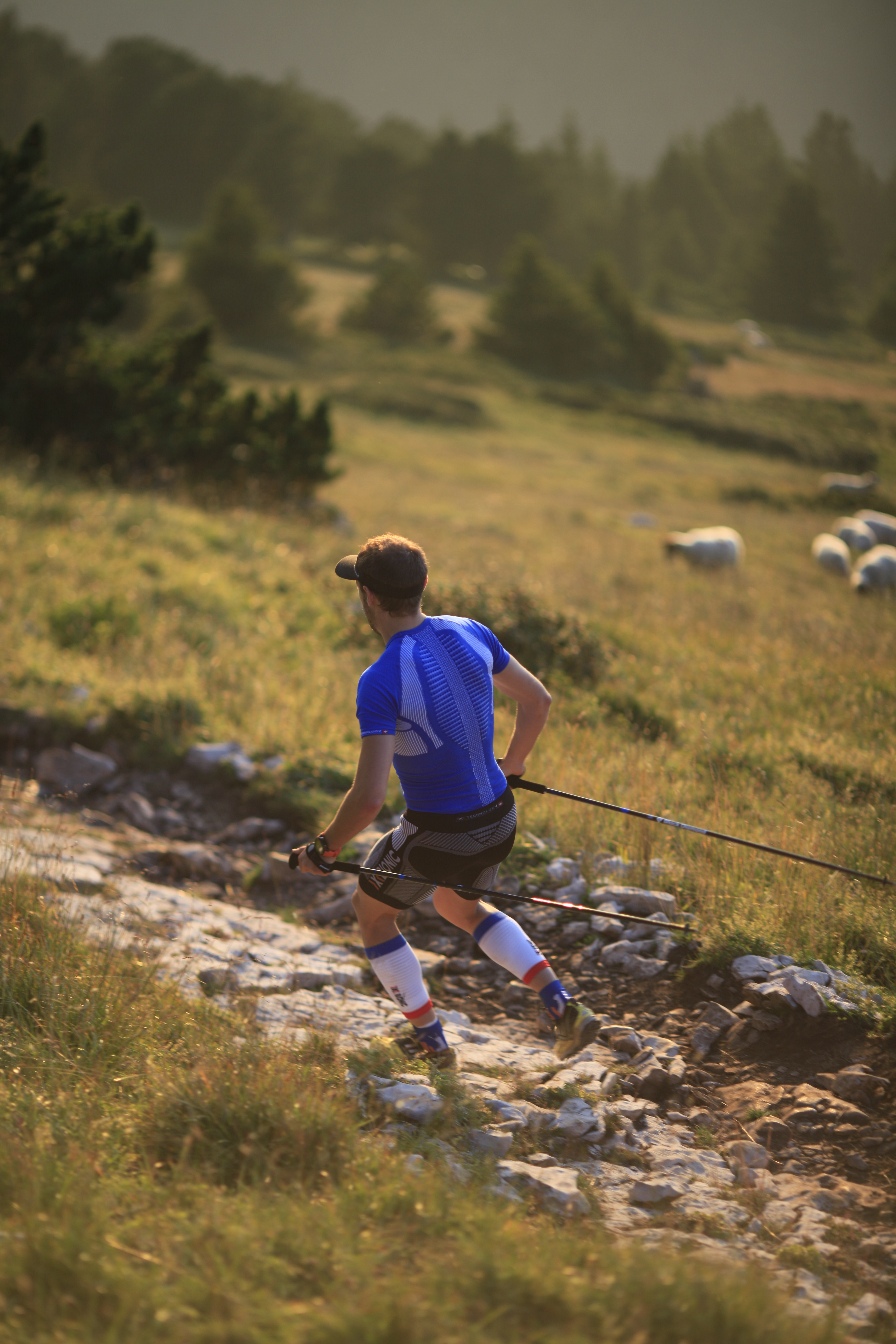 Rémi Loubet Trail