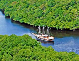 WELLNESS EXPERIENCE NA AMAZÔNIA