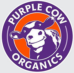 purple cow.JPG