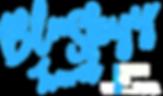 BluSkyy Travel Logo - Transparent.png