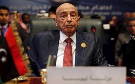 """Встреча """"старейшин и авторитетных представителей"""" племен восточной Ливии с президентом Египта"""