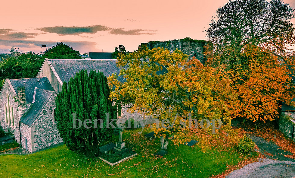 St. David's Church Naas