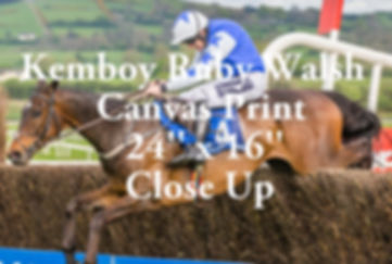Ruby Walsh retires after he Jump's the last fence and wins the Punchestown 2019 Gold cup on Kemboy