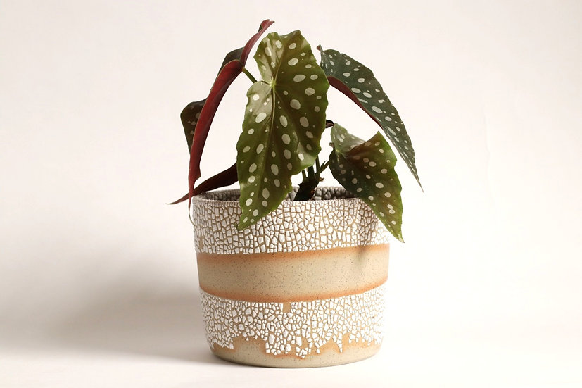 Crawl glaze planter - Large