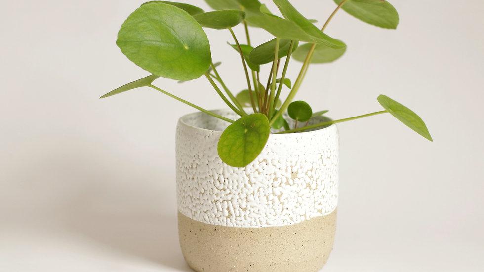 Bead Glaze Planter