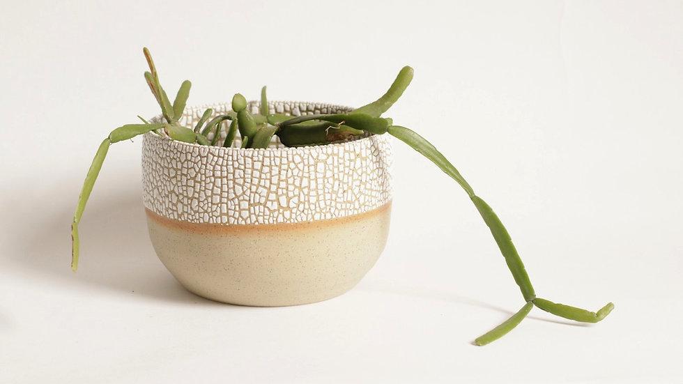 Crawl glaze planter - Medium