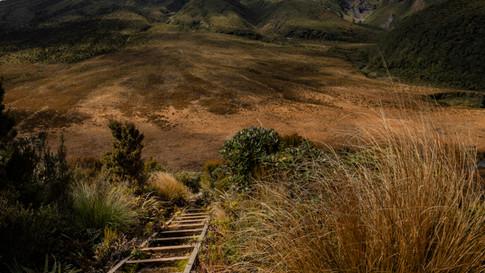 New_Zealand_07_Taranaki