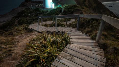 New_Zealand_10_Castlepoint