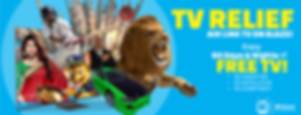 TV RELIEF BANNER.png