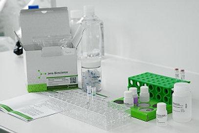 Total RNA Purification Kit