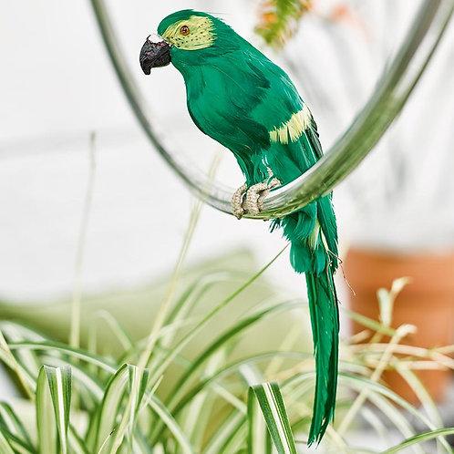 Tropical Fiesta Parrot Decorations