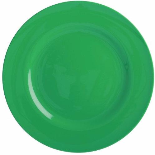 Melamine Round Dinner Plate in Green