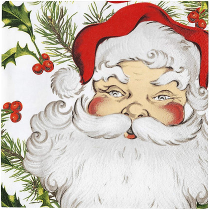BOTANICAL SANTA 33cm NAPKIN PACK OF 20