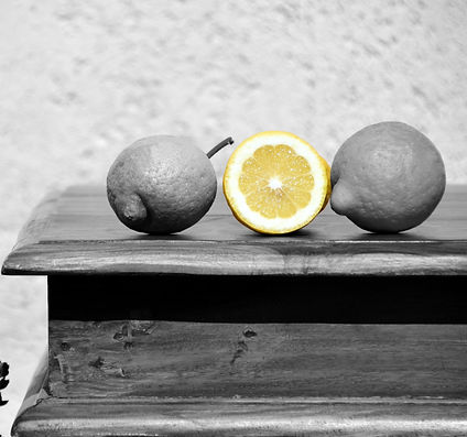 Lemon_Grey_2252546_edited_edited.jpg