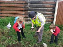 Seed planting 2016