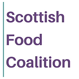 SFC square logo.png