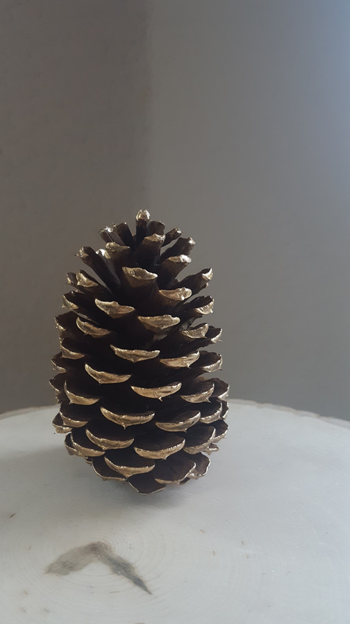 I literally just found a pinecone I liked (my walking park has pine trees) and then painted the tips with liquid gold.