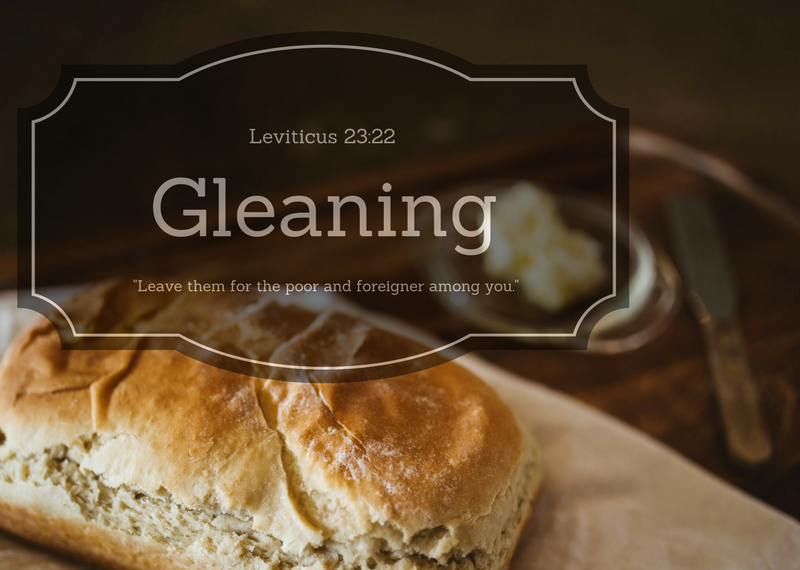 Gleaning is our weekly collection of food and cleaning items