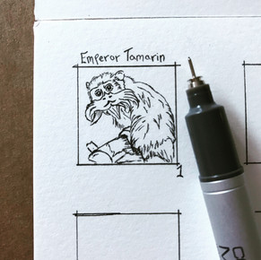 Day 1: Emperor Tamarin