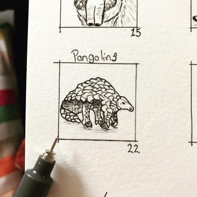 Day 22: Pangolins