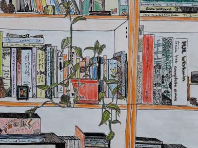 Jikke's bookshelf <3