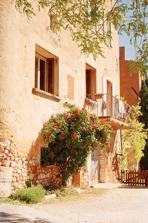 Roussillon xi