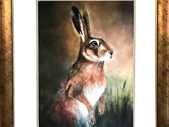 Harry Hare