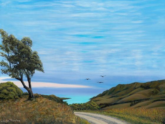 Louise Thwaites Pigeon Bay[4523].jpg
