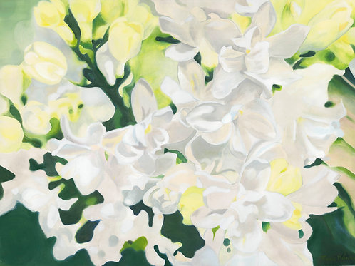 White Floral - Original Oil Painting