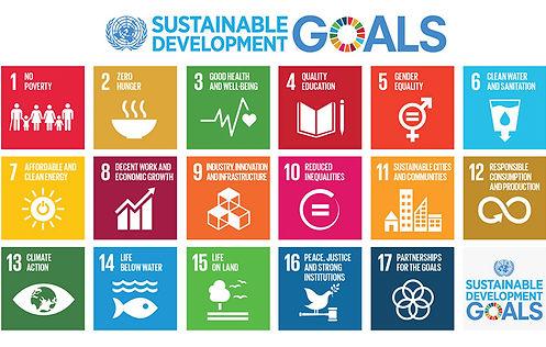 Sustainable-Development-Goals.jpg