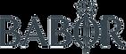 BABOR Logo_P432.png