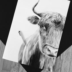 Kugelschreiber-Zeichnung