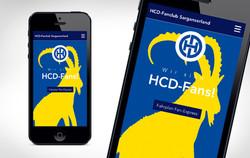 Referenzen_HCD-Sarganserland_Website_3