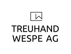 TreuhandWespe_SW