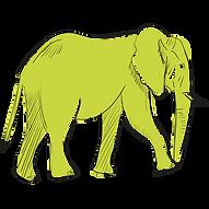 Icon-Test_Elefant.png