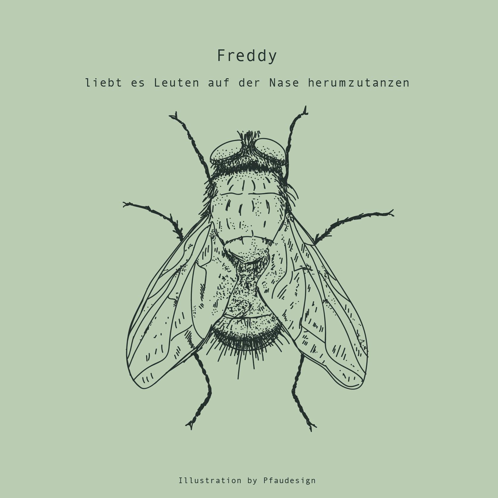 Illustration Fliege-Freddy