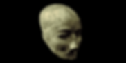 platered_skull_jericho_02.png