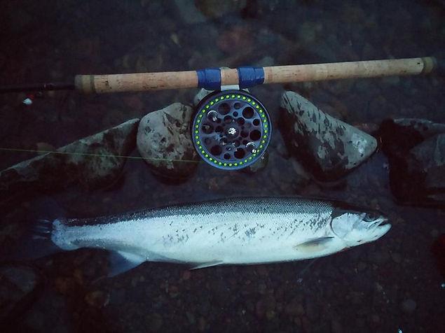 The Prophecy centerpin fishing reel, centerpin, float fishing
