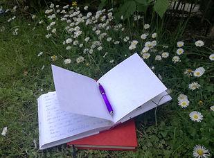 Buch im Garten privat.jpg