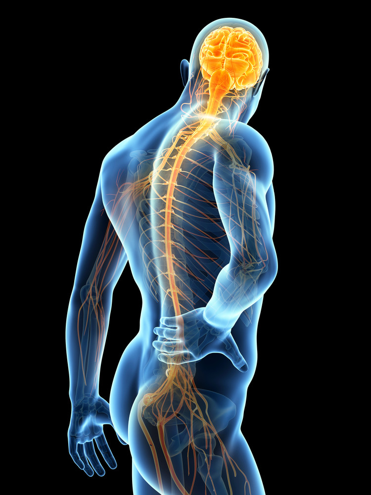 Comment soulager les douleurs au bas du dos? Les conseils d'un physiothérapeute