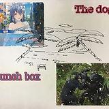 201907settokkuryoku_fujiyama02.jpg