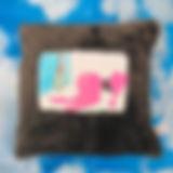 201903pk_kameyama.jpg