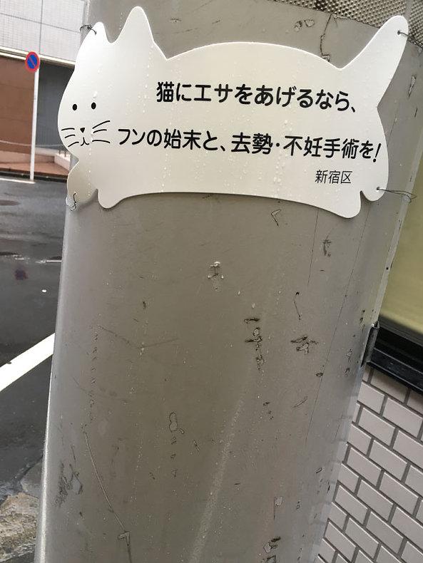 202001miyako.jpg
