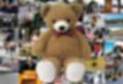 201901kanekoyama_kuma.jpg