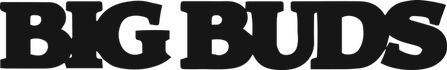 Bigbuds-logo-dark.png