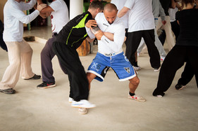 Push Hands No Limit Camp Day 2+3-18.jpg