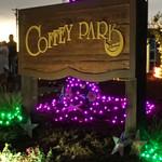 Coffey Park Sandblasted Sign Installed