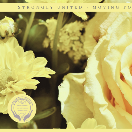 SED YELLOW ROSE ZOOM BACKGROUND
