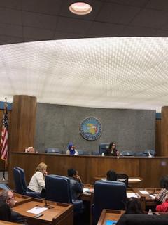 Chair Anaya Leading Commission Meeting
